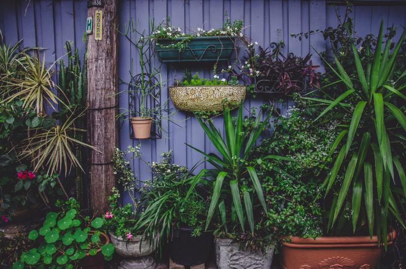 Je ideale tuin