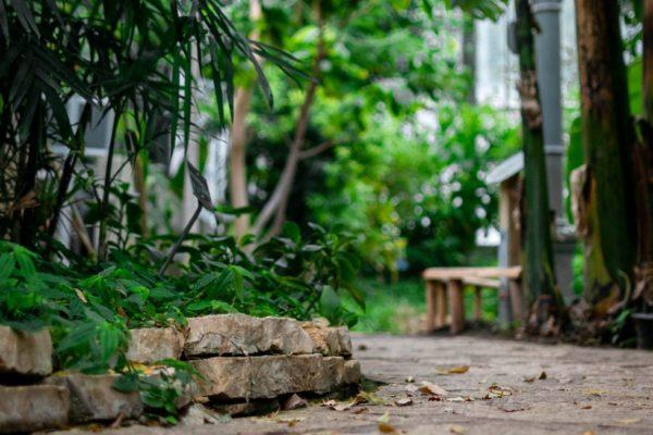 De beste tips om je tuin te ontwerpen