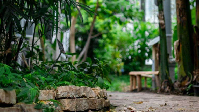 Tips om je tuin te ontwerpen